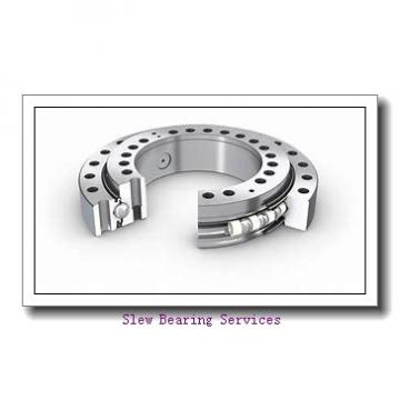 Slewing Ring Bearing for Pet Preform System 010.14.304