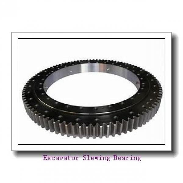 Light Series hot sale  with flange bearing slewing ring for canning machinery #1 image