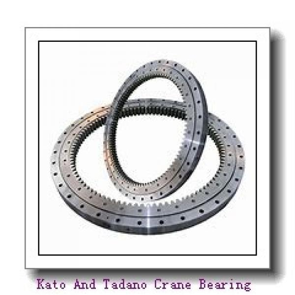 Single-Row Four Point Contact Slewing Ball Bearing with Internal Gear 9I-1b20-0950-0748 #1 image