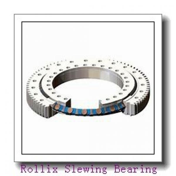 RKS.901175101001 Four point contact ball slewing bearing #1 image
