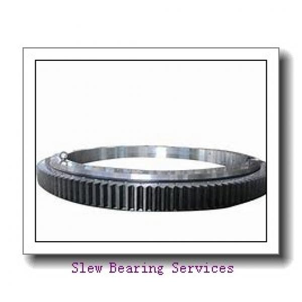 Slewing Bearing Ring for Excavator Spare Parts #1 image