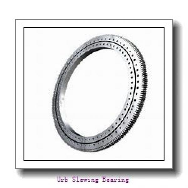 VI160288-N Four point contact ball bearings (Internal gear teeth) #1 image